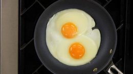 Cs_eggs_l2_t2b_onecolumn