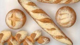 Cs_bread_l1_onecolumn