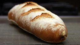 Cs_bread_l2_t8_onecolumn