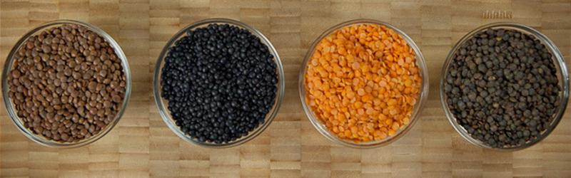 Grains & Legumes
